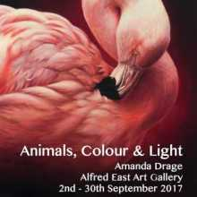 Animals Colour and Light Exhibition poster